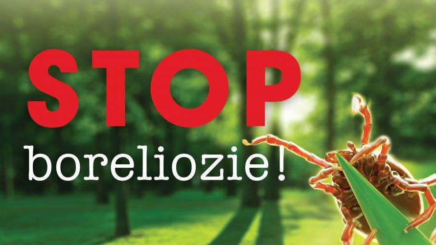Czerwony napis Stop Boreliozie, a na zielonym tle lasu i trawy, a obok kleszcz.